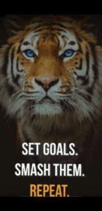 Поставьте цели. Разресите их. Повторите.
